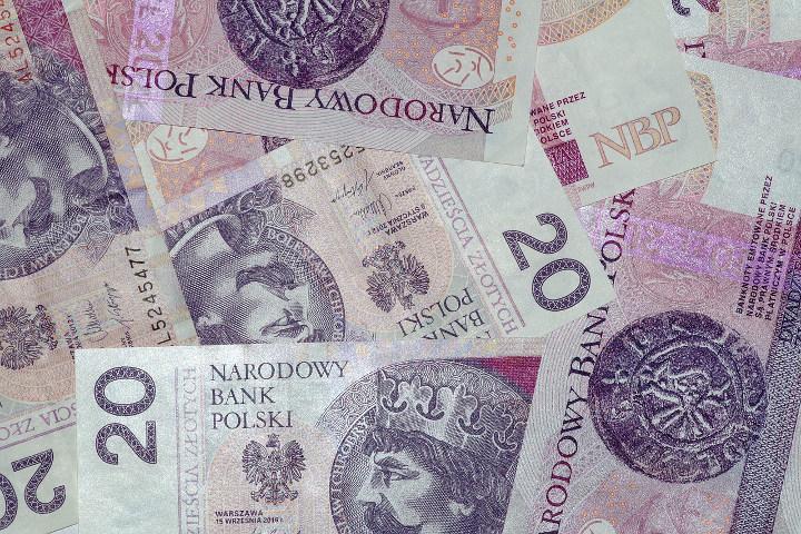 Gotówkowy kredyt 20 złotowe banknoty