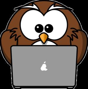 sowa - komputer internet